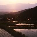 棚田の夕景